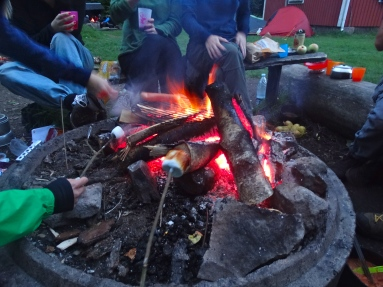 Roasting marshmallows over the campfire
